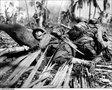 Самая дурацкая операция войск США во Второй мировой