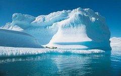 Арктика привлекла внимание Архангельска