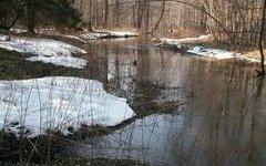 В Пскове уровень паводка ожидается выше среднемноголетних значений