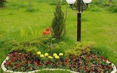 Кемерово зацветет миллионом цветов