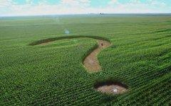 500 курганских многодетных семей обзаведутся земельными участками