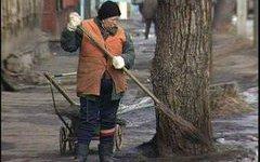 В Санкт-Петербурге готовятся к месячнику благоустройства