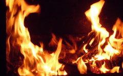 Особый противопожарный режим введен в Рязанской области